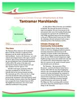 Adapting to Climate Change: Infrastructure at Risk, Tantramar Marshlands