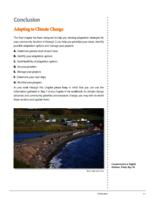 7 Steps to Assess Climate Change Vulnerability in Your Community. Conclusion: Adapting to Climate Change
